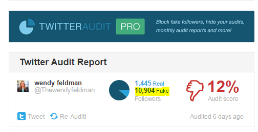 twitter audit wendy feldman